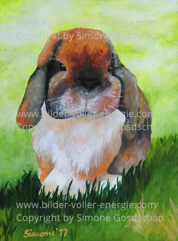 Krafttier Kaninchen+Hase