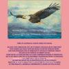 Weißkopfseeadler rosa