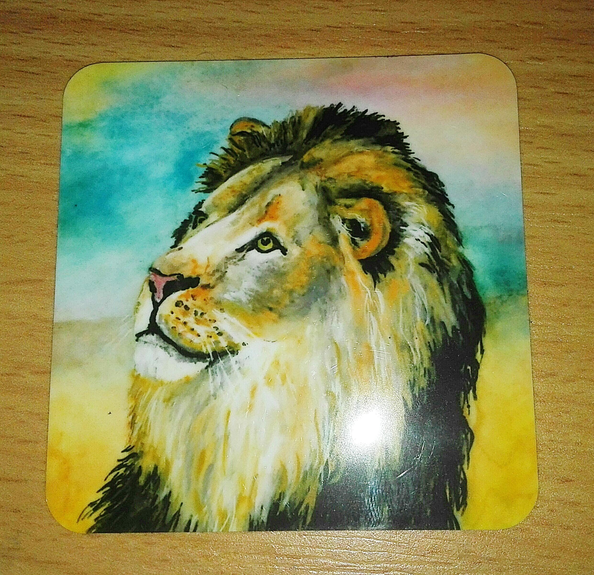 Magneten Löwe