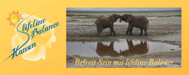 silke-hansen-elefanten-see
